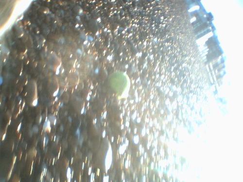 00046_tennis_ball
