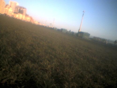 00078_hove_lawn