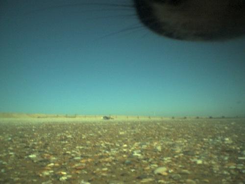 Mars0003