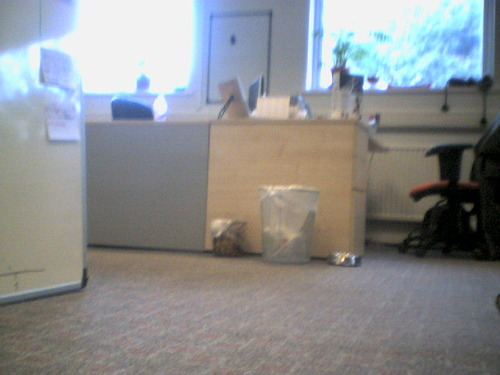 00092_around_the_office